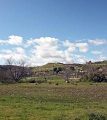 SalinasRiverCorridor03